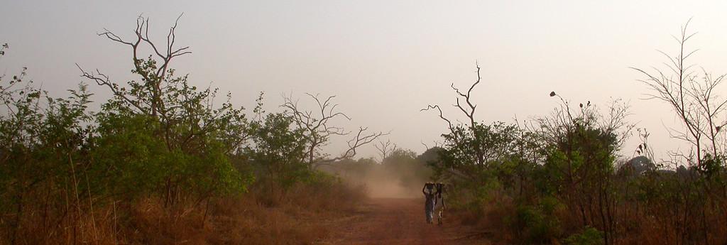 Lisboa - Bissau 2005